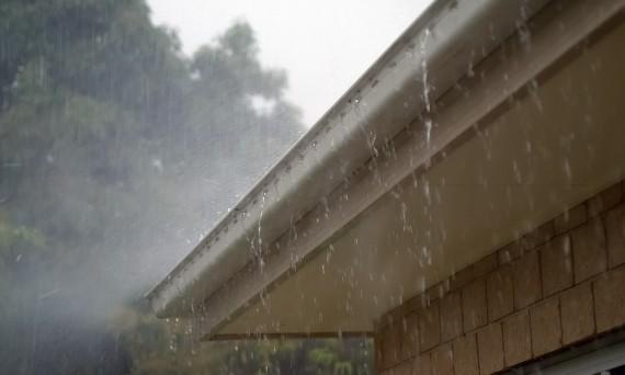 2016 wk 15 dak in regen